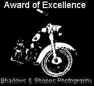 Excellence Award. January 18.2002